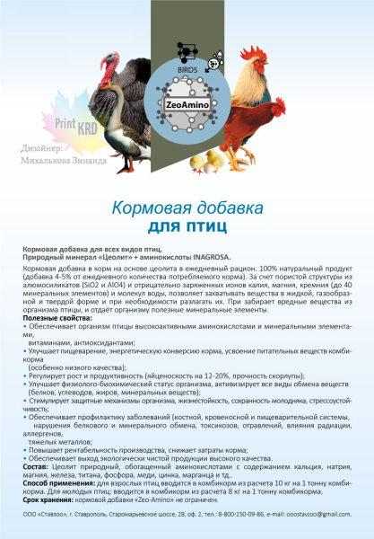 а-5_листовка-птицы
